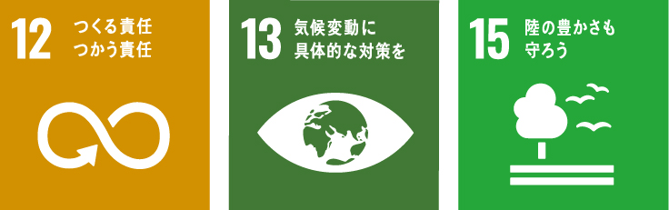 持続可能な開発目標:12/13/15